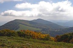 autumn lasów góry Zdjęcia Royalty Free