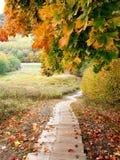 Autumn. In Latvia, Sigulda stock image