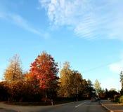 Autumn in Latvia. Sunny morning in Latvia in autumn stock image
