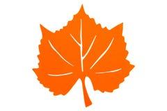 Autumn Leaf anaranjado Imagen de archivo libre de regalías