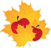 Autumn leaf and apple Stock Photography
