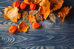 Autumn leaf backgound on blue wooden table Stock Photo