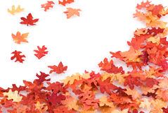 Autumn leaf background. Stock Images