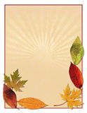 Autumn leaf background. A background design with autumn leaves Stock Photos