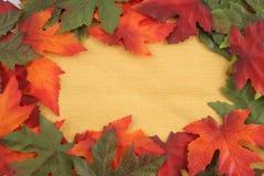 Autumn leaf background Royalty Free Stock Photography