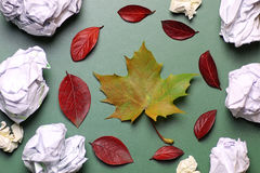Autumn leaf background on a green  table Stock Photography