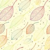 Autumn leaf background Royalty Free Stock Photos
