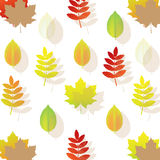 Autumn Leaf Background. Vector Stock Photography