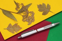 Autumn leaf with ballpoint pen on colorful bright paper, background with copy space for text. Top view. Concept of. Autumn leaf with ballpoint pen on stock photo