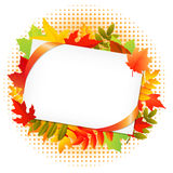 Autumn Leaf And Blank Gift Tag Royalty Free Stock Images