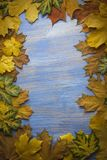 Autumn leaf on blue wood background top view Royalty Free Stock Photos