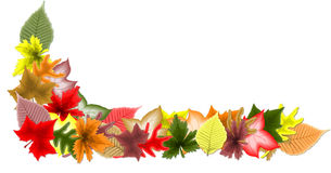 Autumn leaf border. Computer-generated illustration of a border of autumn leaves Stock Image