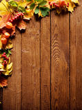 Autumn leaf border Royalty Free Stock Image