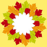 Autumn leaf border background Stock Image