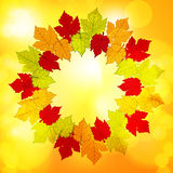 Autumn leaf border background glow Stock Photos