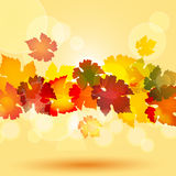 Autumn leaf border and glowing circles Stock Photo