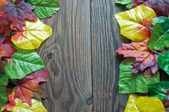 Autumn leaf border Royalty Free Stock Images