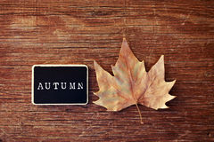 Autumn leaf and chalkboard with the word autumn Royalty Free Stock Photo
