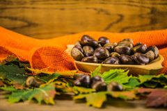 Autumn leaf and   chestnuts on  wooden table Stock Images