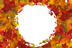Autumn Leaf Circle Background Arkivfoto