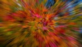 Autumn leaf explosion Royalty Free Stock Image