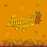 Autumn leaf fall. Calligraphic inscription with the leaf decoration Stock Images