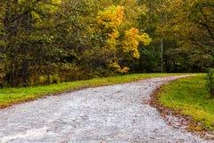Autumn Leaf Fall i parkera fotografering för bildbyråer