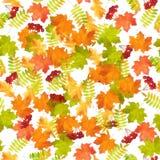Autumn Leaf Fall Pattern inconsútil Fotografía de archivo libre de regalías
