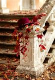 Autumn leaf fall. Red and yellow leaves on the destroyed old stone steps burgundy (marsala color) hat. Autumn leaf fall. Red and yellow leaves on the destroyed stock photo
