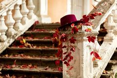 Autumn leaf fall. Red and yellow leaves on the destroyed old stone steps burgundy (marsala color) hat. Autumn leaf fall. Red and yellow leaves on the destroyed royalty free stock image