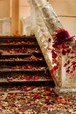 Autumn leaf fall. Red and yellow leaves on the destroyed old stone steps burgundy (marsala color) hat. Autumn leaf fall. Red and yellow leaves on the destroyed royalty free stock photo