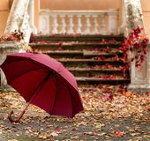 Autumn leaf fall. Red and yellow leaves on the destroyed old stone steps burgundy (marsala color) umbrella. Autumn leaf fall. Red and yellow leaves on the royalty free stock image