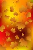 Autumn leaf fall.Vector Royalty Free Stock Photos