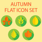 Autumn Leaf Flat Design Icon Royalty Free Stock Images