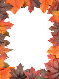 Autumn leaf frame Stock Photography