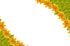 Autumn Leaf Frame. Frame (Autumn leaves) on isolated background stock photography