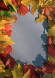 Autumn Leaf Frame  Stock Photo