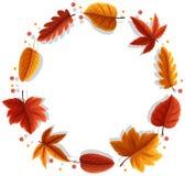 An autumn leaf frame. Illustration vector illustration