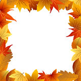 Autumn leaf frame Royalty Free Stock Photo