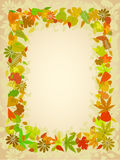 Autumn leaf frame with space for text Stock Photo