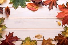 Autumn leaf frame for words and inscriptions, copy space. Top view stock images