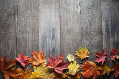 Autumn leaf frame for words and inscriptions, copy space Royalty Free Stock Photography
