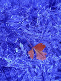 Autumn Leaf on Frozen Ice Crystals. One Autumn Leaf on Frozen Blue Ice Crystals Stock Image