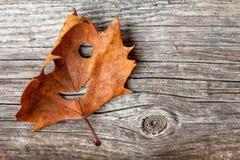 Autumn Leaf heureux images libres de droits