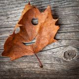 Autumn Leaf heureux photo libre de droits