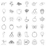 Autumn leaf icons set, outline style. Autumn leaf icons set. Outline style of 36 autumn leaf vector icons for web isolated on white background Stock Image