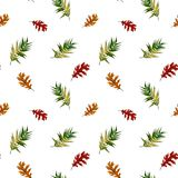 Autumn leaf, isolated on white background. Simple cartoon flat style. Watercolor hand drawn Illustration vector illustration