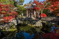 Autumn leaf in Kiyomizu-dera temple Stock Images