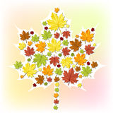 Autumn leaf made from small leaves. Autumn leaf made from small leaf stickers Royalty Free Stock Photography