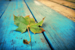 Autumn leaf. The maple leaf lying on old boards Stock Image